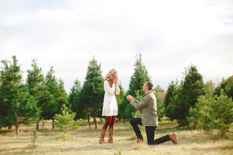 Christmastime Proposal at Christmas Tree Farm