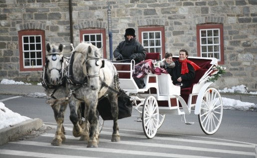 Christmastime Proposal and a cozy Horse and Carriage Ride