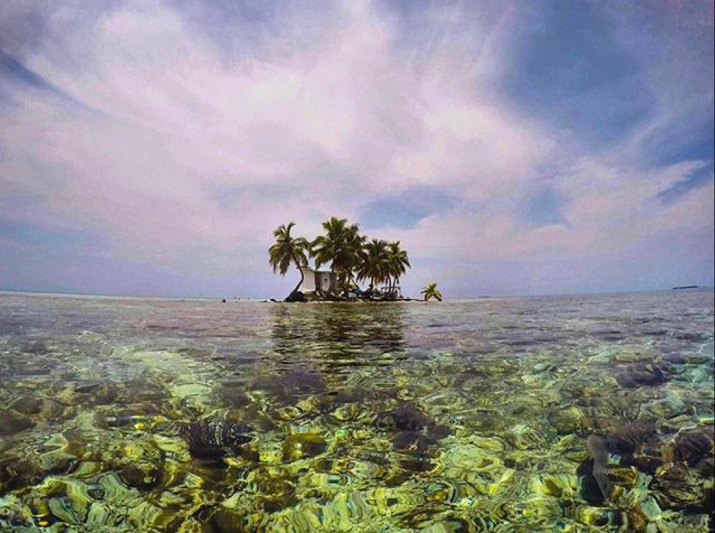 Placencia Belize Gladden Spit and Silk Cayes Marine Reserve2 Tirzah Travel