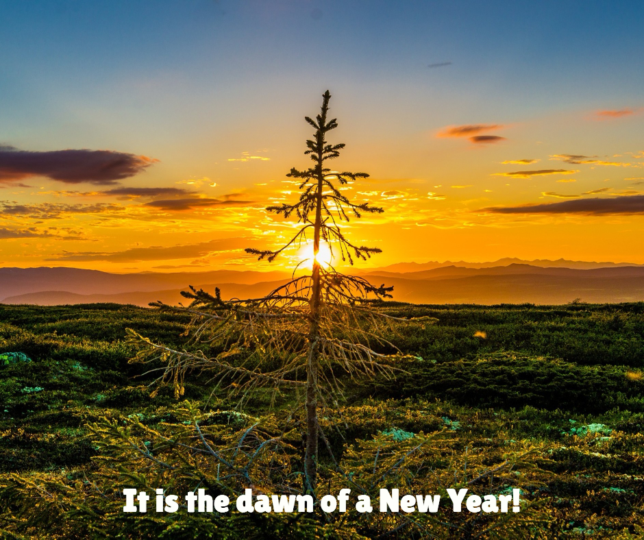Dawn of a New Year Happy New Year Dreams Goals Resolutions