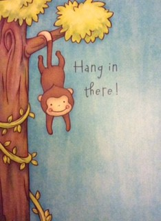 Hang In There Inspirational Phrase