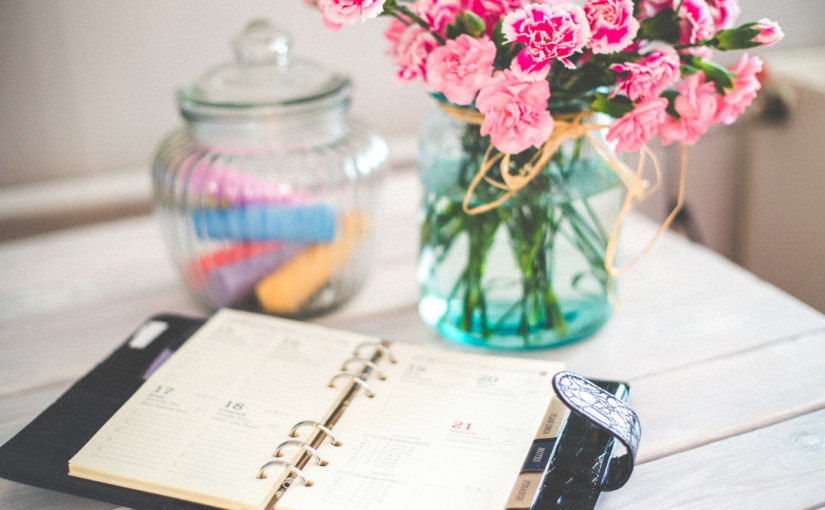 Tirzah New Year Resolutions Goals Monthly Planner